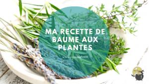 Ma recette de baume aux plantes